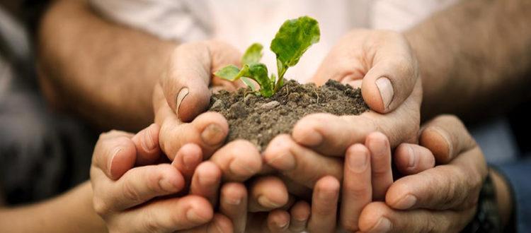 gram vikas sewa sansthan clean and green environment